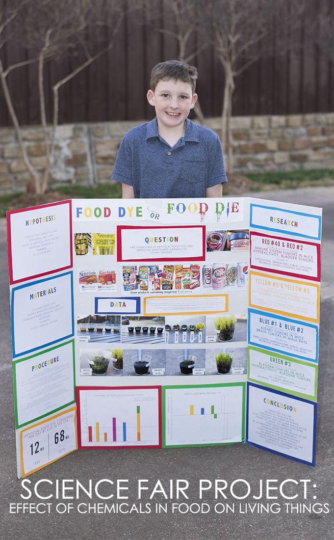 Science fair food dye
