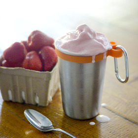 Strawberry Milkshake low carb recipe